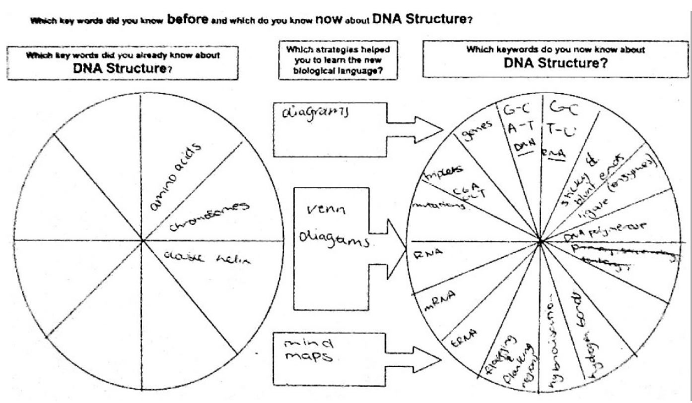 Investigating the use of term recall and recognition tools in – Dna Structure and Function Worksheet