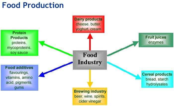 role of food processing industry for Role of agro-food processing companies 22  and opportunities for the private sector in africa's  the roles and opportunities for the private sector.