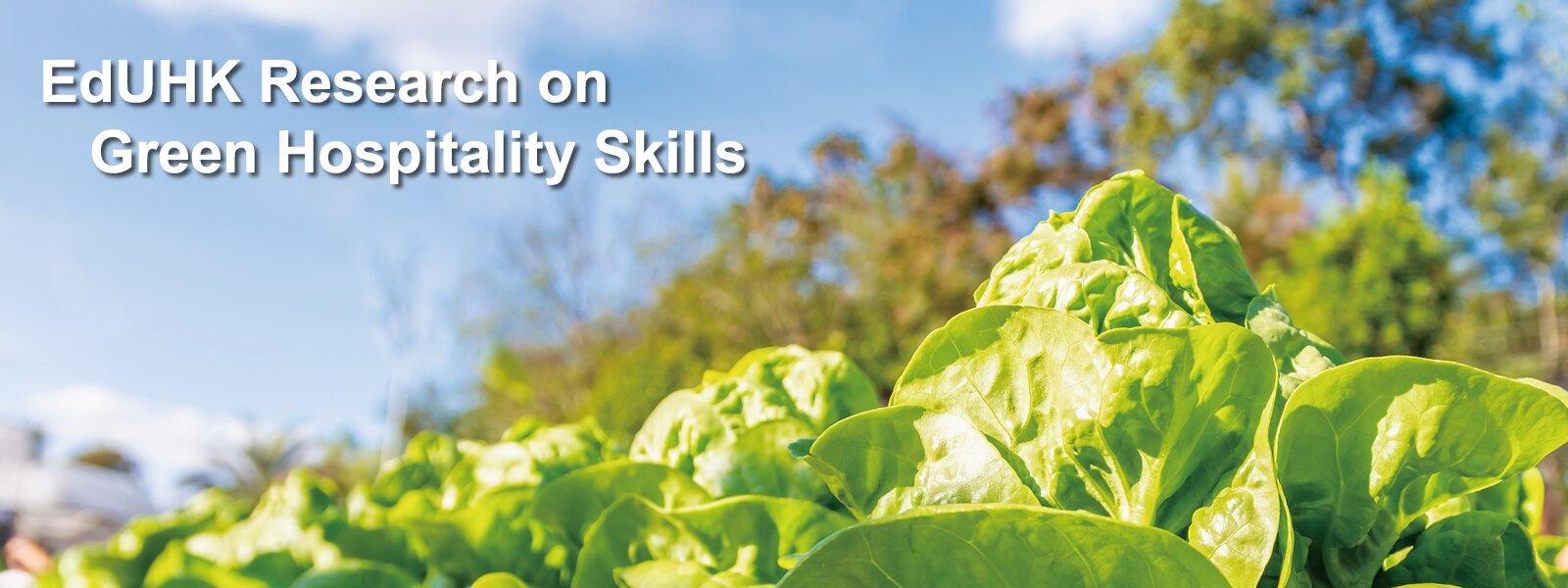 EdUHK Research on Green Hospitality Skills