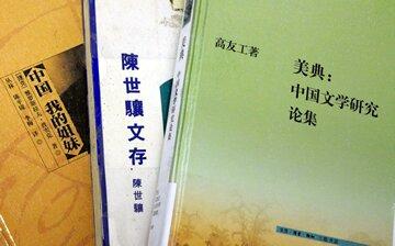 追尋抒情精神:中國文學的現代學術研究中的「中國文學傳統」的概念